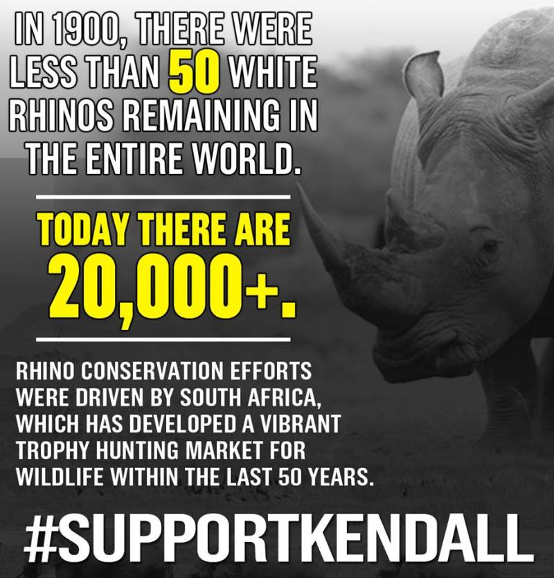 An infographic from Jones's Facebook. This truly remarkable statement credits the rhino's rebound to the fact that trophy hunters can't get enough of them, as though that's a good thing.