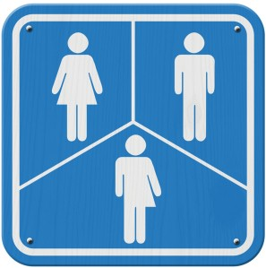 trans-sign